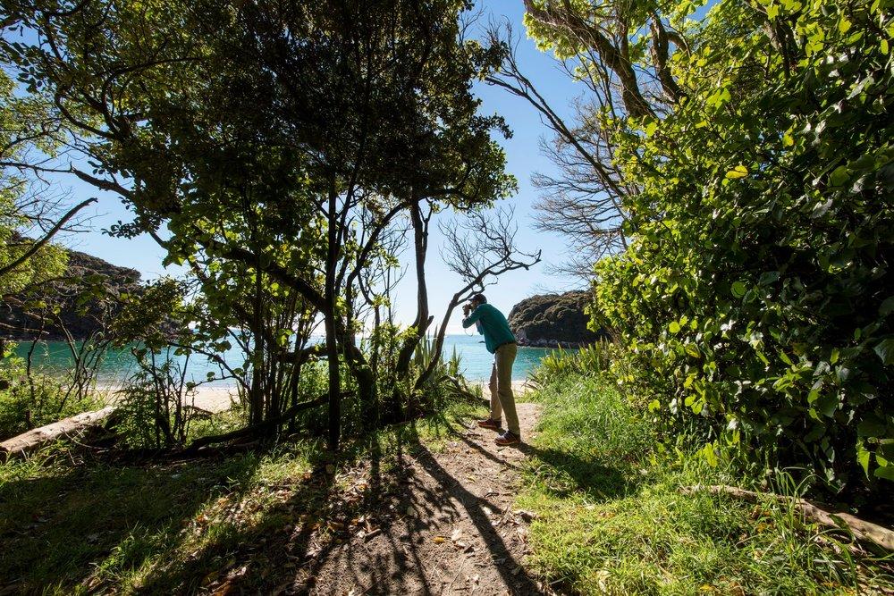 1B3A1513_Abel_Tasman_National_Park_Nelson_Miles_Holden.jpg