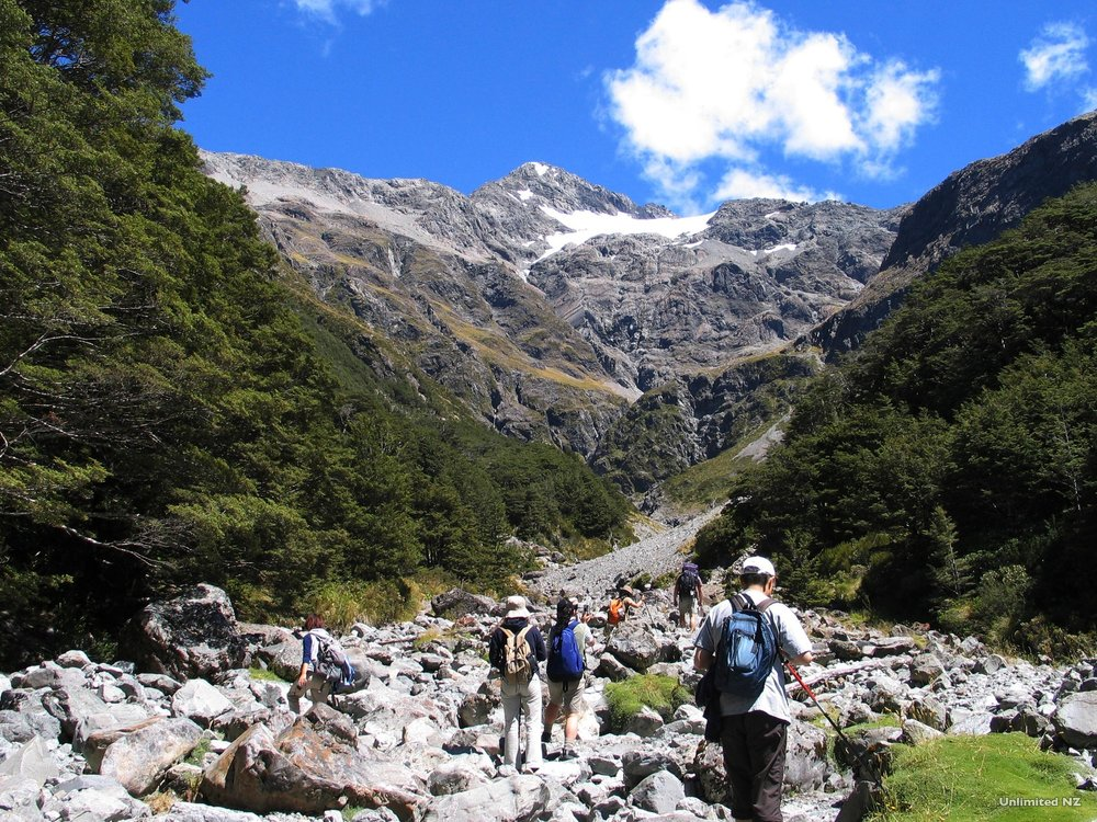 AT29-Bealey-Valley-Arthur%27s-Pass-Canterbury-Unlimited-New-Zealand.jpg