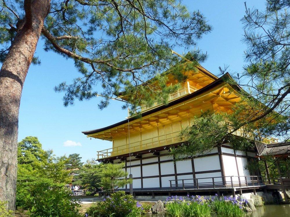 Japan kyoto prefecture kinkaku, nature landscapes..jpg