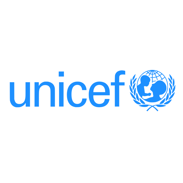 unicef synergies.png