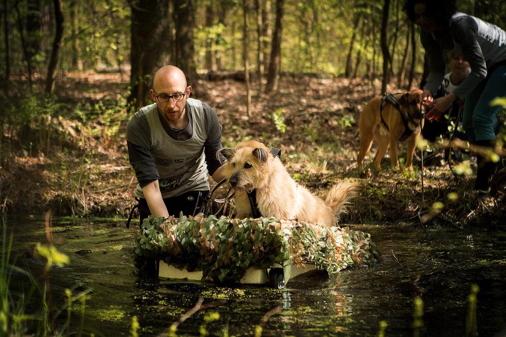 Startbedingungen - Camp CanisX ist ein Mensch-Hund-Hindernislauf, bei dem die Aufgaben und Herausforderungen auf dem Trail mittels Canicross verbunden werden. Für die Teilnahme brauchst du eine passende Ausrüstung für dich und deinen Hund. Schau dir auf dieser Seite in Ruhe an, was du benötigst.