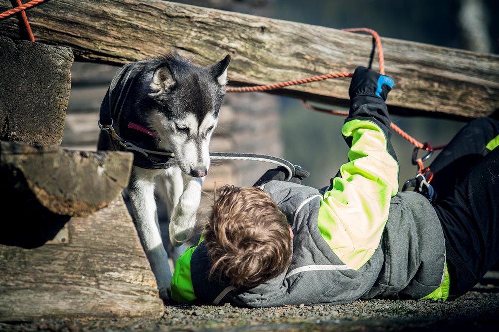 Camp Canis TrainingsCamp Eifel 2018 (246).jpg