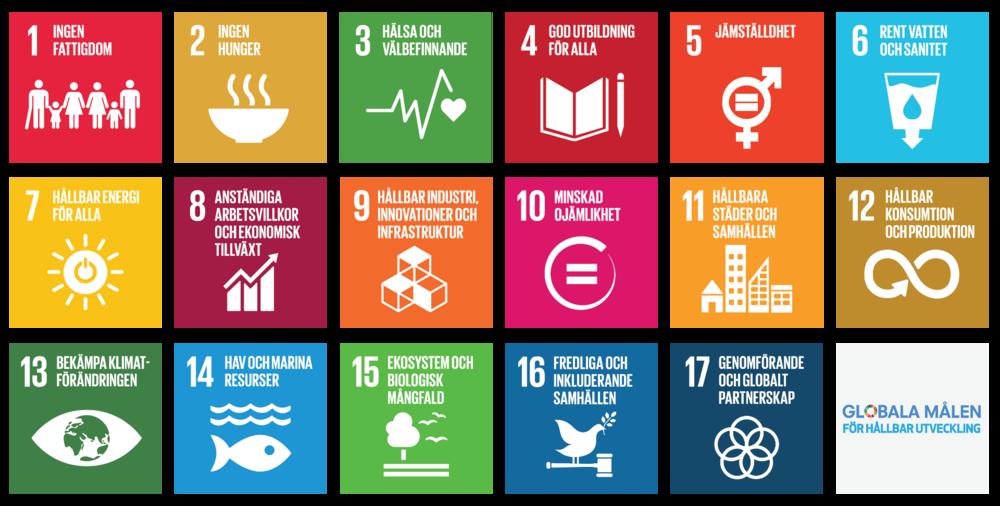 Globala Hållbarhetsmålen - Med motiveringen: