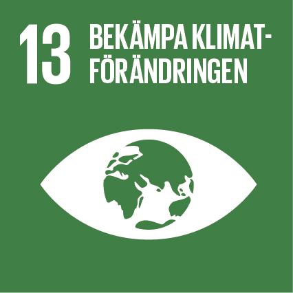 FN:s Definition:  Vidta omedelbara åtgärder för att bekämpa klimatförändringarna och dess konsekvenser.