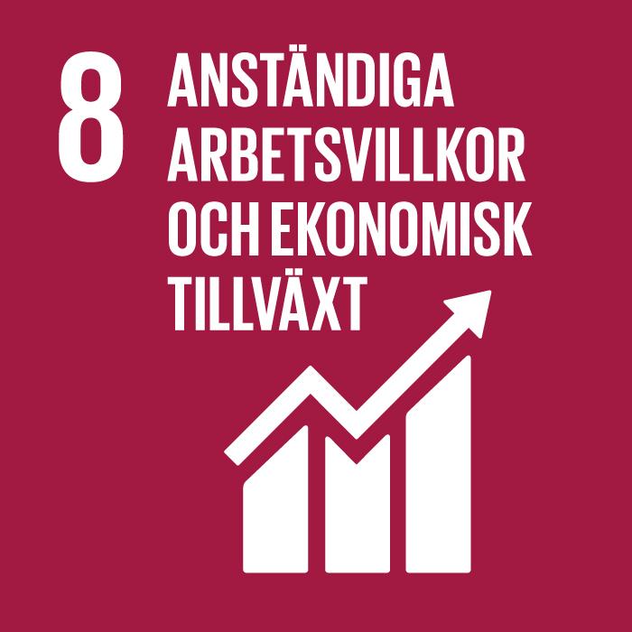 FN:s Definition:Verka för en inkluderande och långsiktigt hållbar ekonomisk tillväxt, full och produktiv sysselsättning med anständiga arbetsvillkor för alla.
