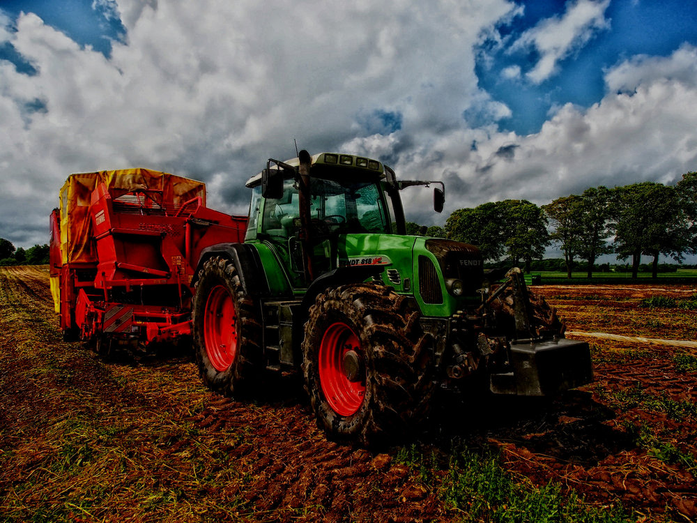 AG INPUT - Entities that sell agricultural inputs to producers. Spreadsheet is organized into the follow categories: hay/feed, seed, equipment, fertilizer, pesticides, breeding stock, and miscellaneous.