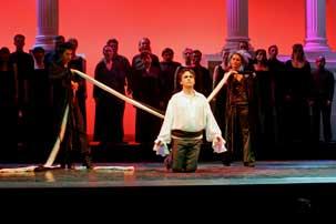 Rameau, Dardanus  (Dardanus). Trier, Germany - 2008