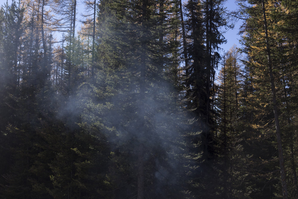 Smoke rises from a smoldering fire, a remnant of the Rice Ridge fire that burned over 150,000 acres, in the forest outside of Seeley Lake, Montana., on Thursday, October 29, 2017.