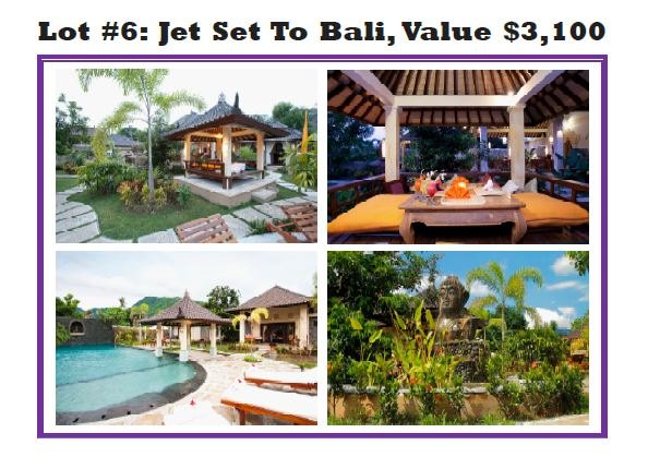 Jet Set To Bali PRC Palm-a-Palooza 2017 Golden Buddha Resort Slide.JPG