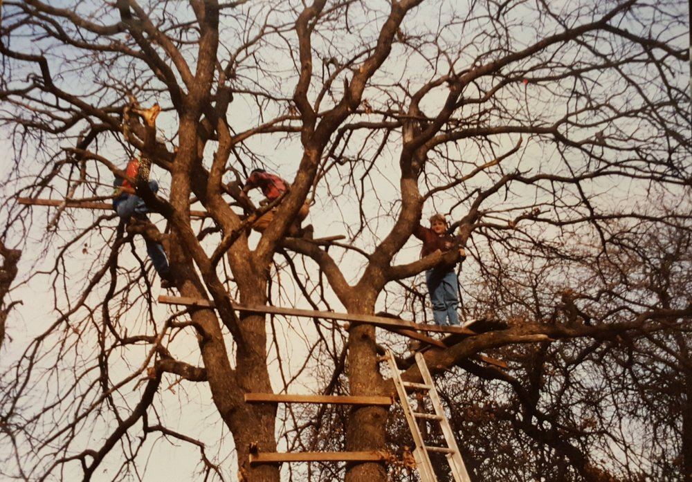 My first tree fort -- a sturdy Post Oak in the Cross Timbers of central Oklahoma (1993).