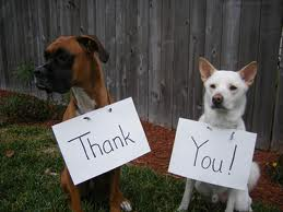 - We are very grateful to all of our foster parents....~ WE COULDN'T DO IT WITHOUT YOU ~MANY HEARTFELT THANK YOUS TO OUR WONDERFUL FOSTER FAMILIES !