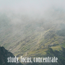 Study | Focus | Concentrate