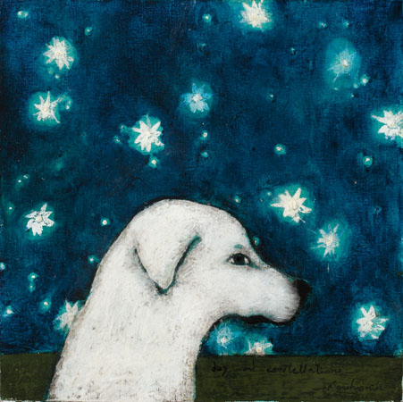 dog and constellations