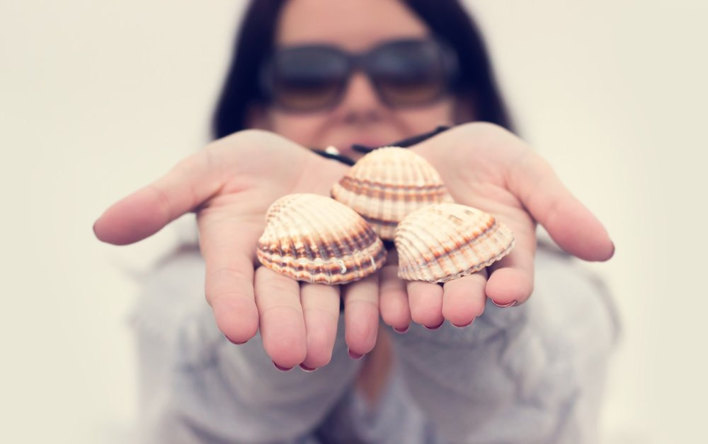 shells in hand.jpg