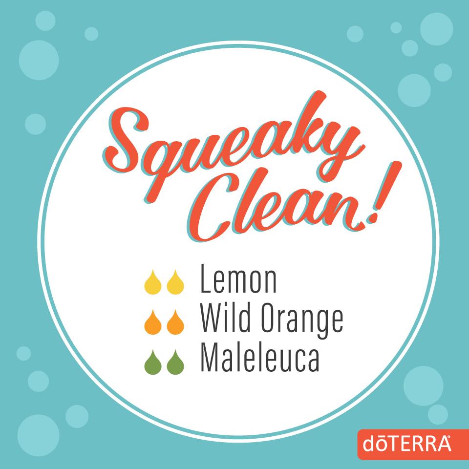 october-diffuser-blend-squeaky-clean.jpg
