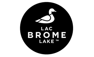 brome lake duck small.jpg