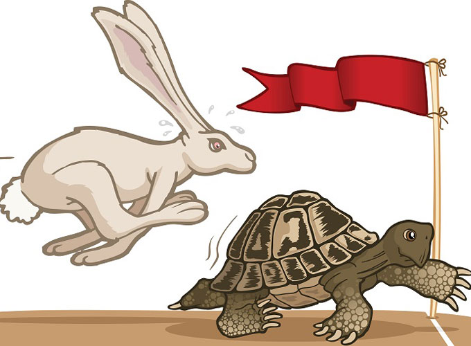 Be-the-Tortoise-not-the-Hare-video