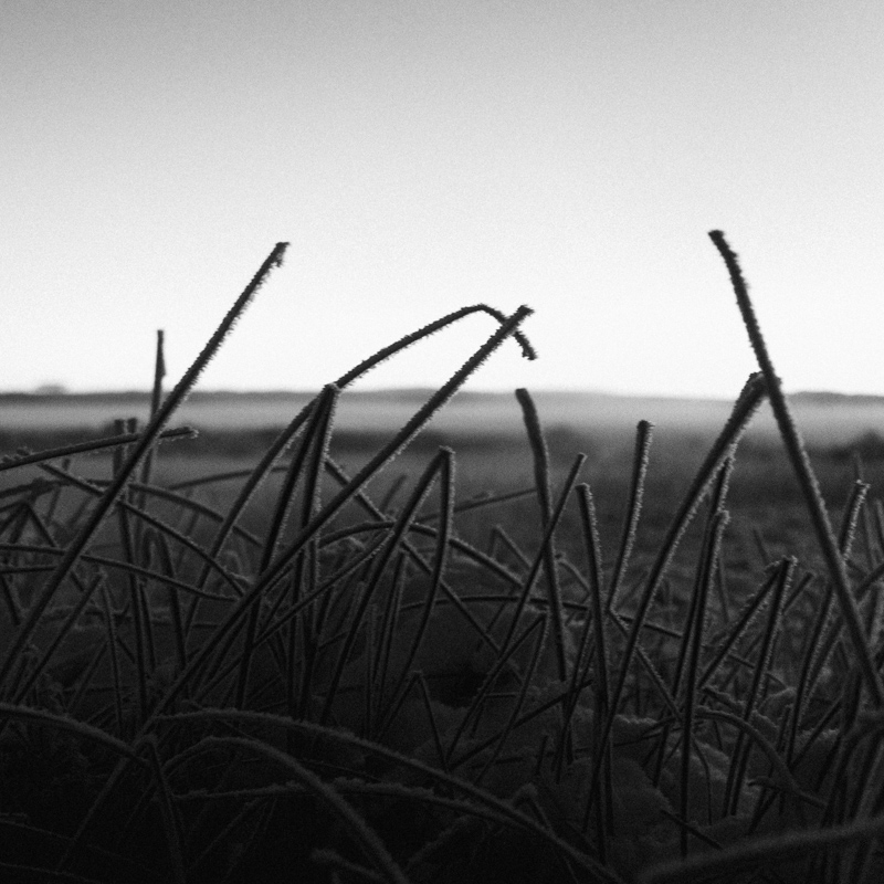 Alvord Desert ~2, Nov 2015
