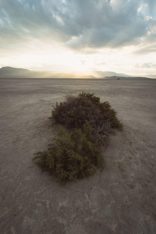 Alvord Desert, OR, 2016