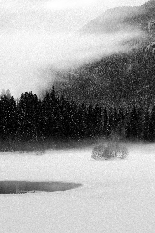 Lily Lake, January 2016