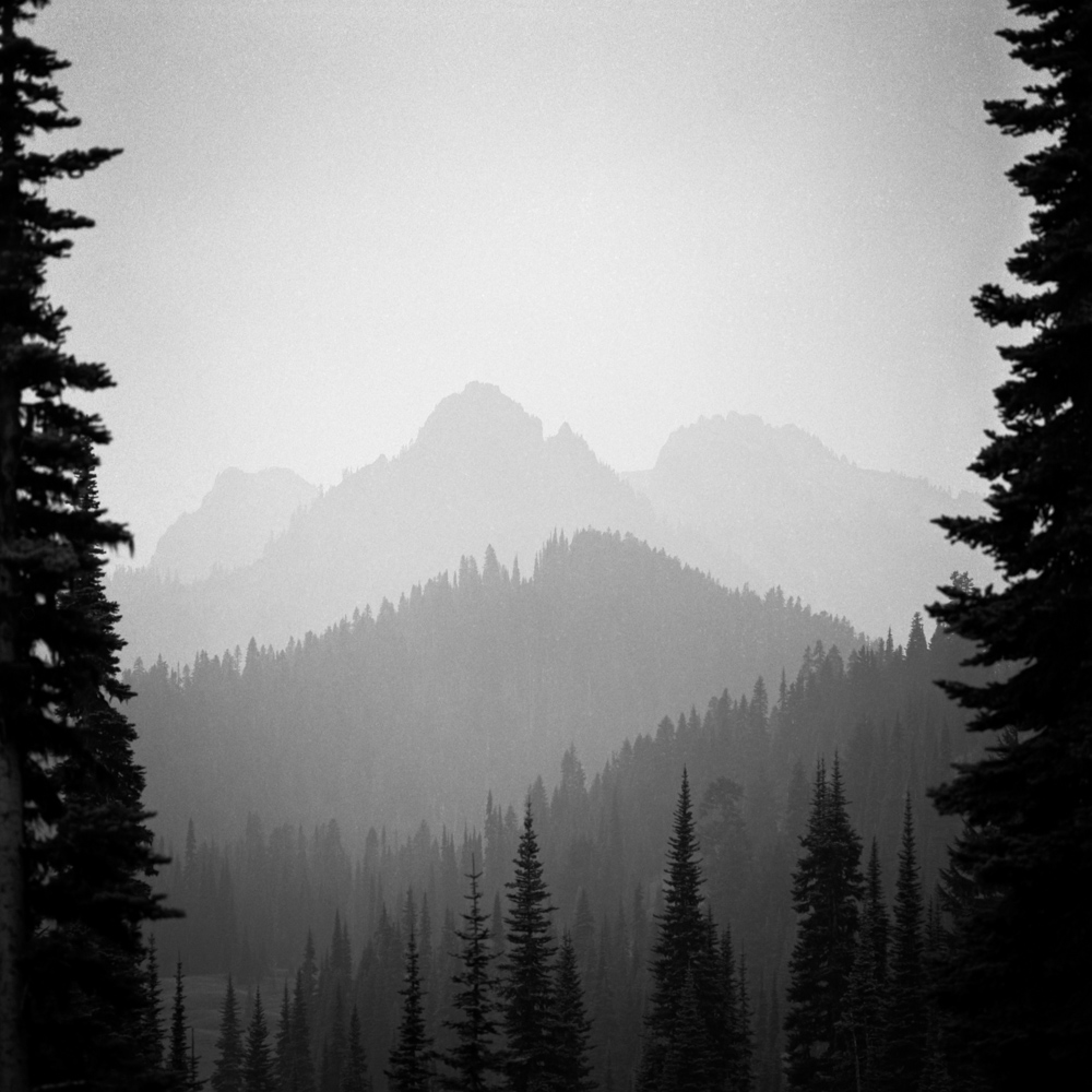 I took this photo next to my car, in Mt Rainier National Park. That drive was very productive and I was able to find several compositions that I liked.