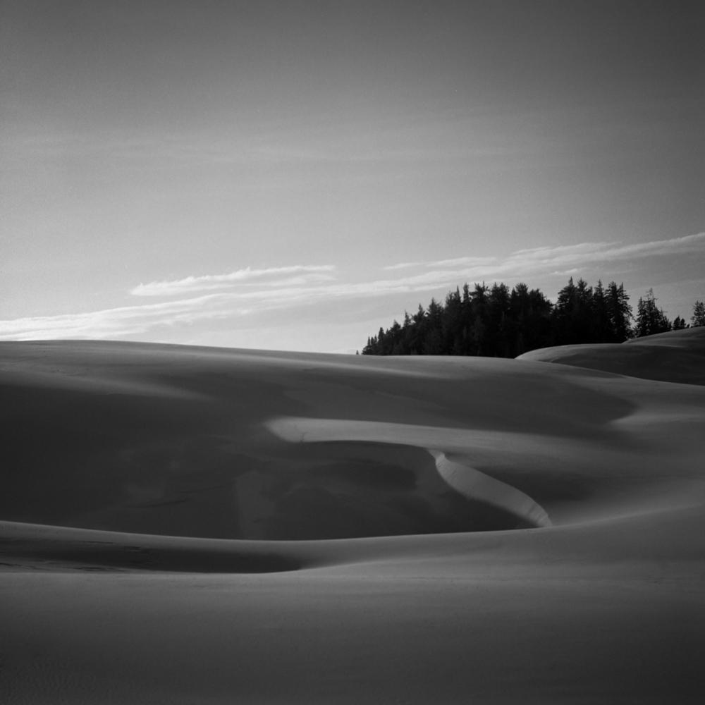 Oregon Dunes, November 2017