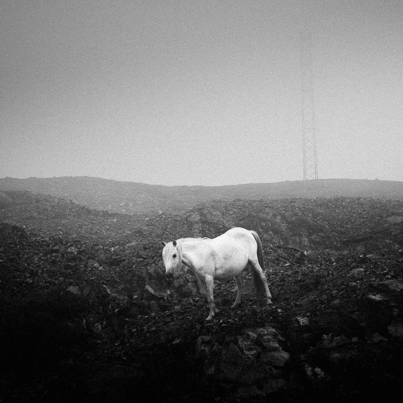 White Horse, San Andres de Teixido, June 2018