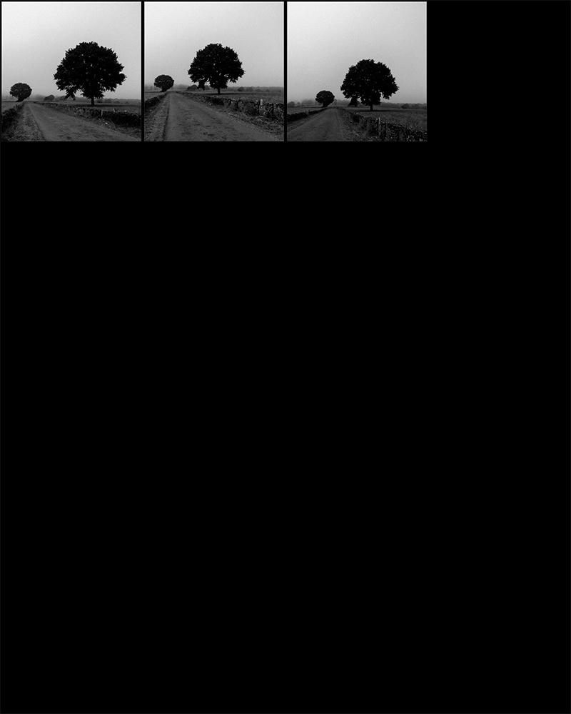 contact-sheet-countryside-02.jpg