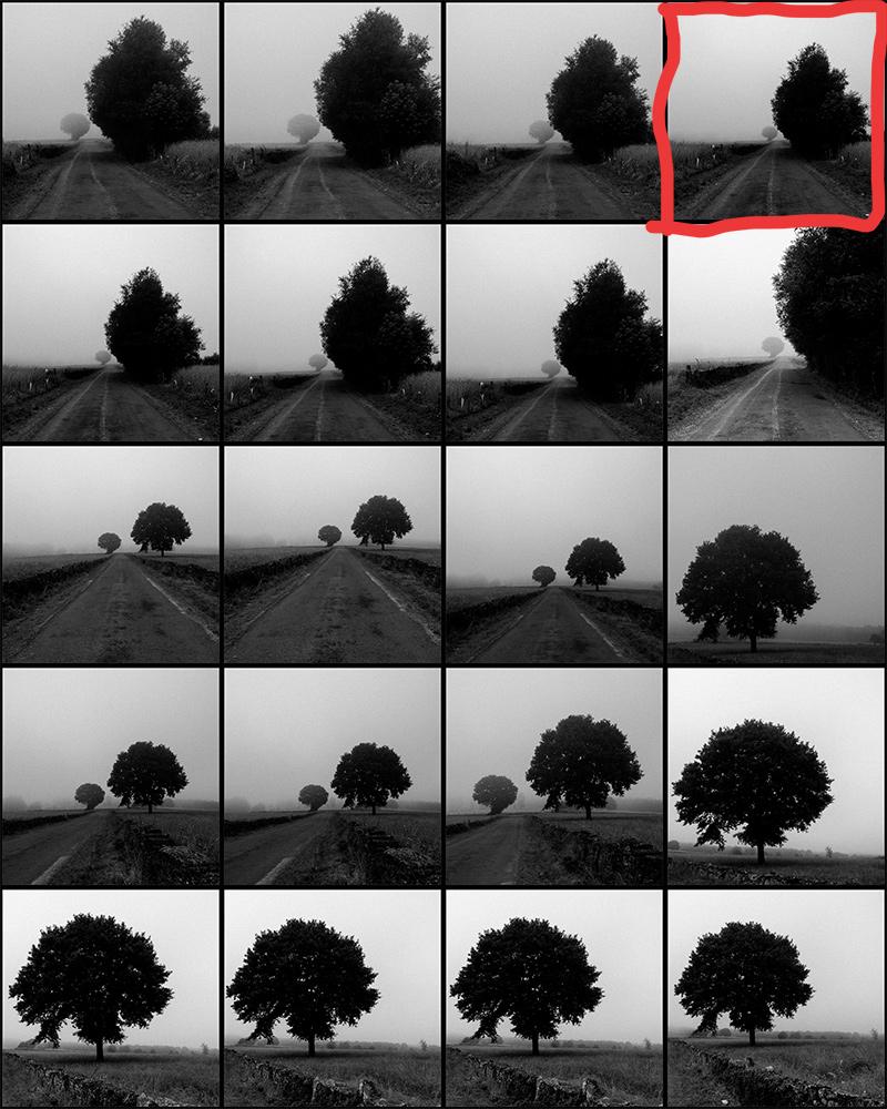 contact-sheet-countryside-01.jpg