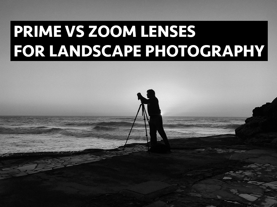 cover_primes_vs_zooms.jpg