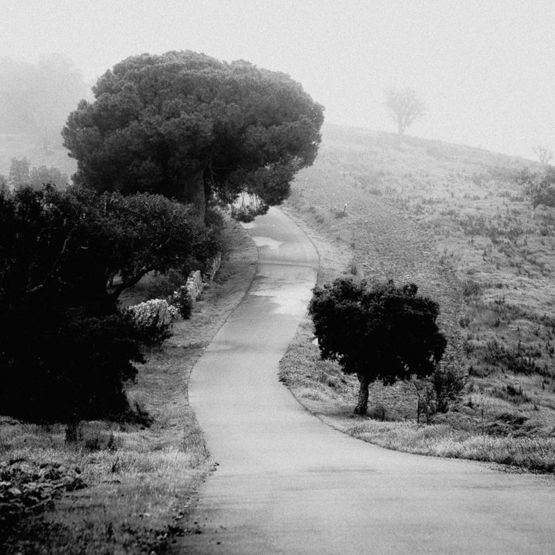 Roads of the Alentejo, São Marcos da Ataboeira, December 2018
