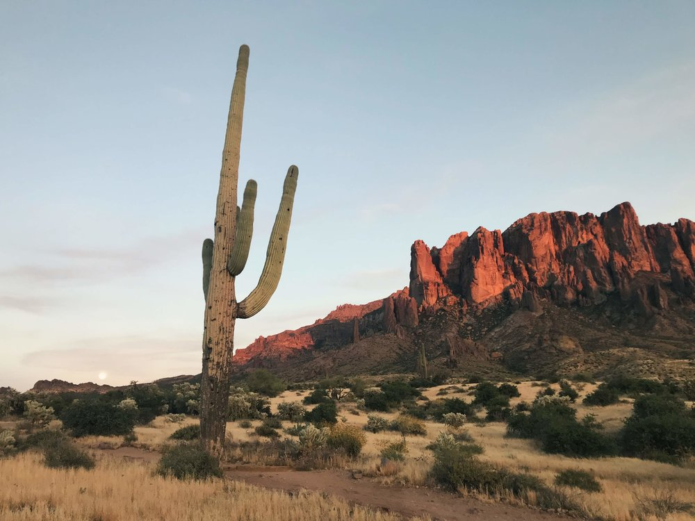Superstition Mountains Wilderness