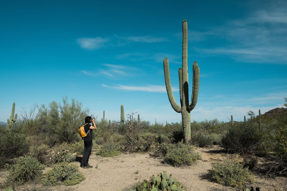 Can you tell I like Saguaros? Me photographing one in Saguaro National Park