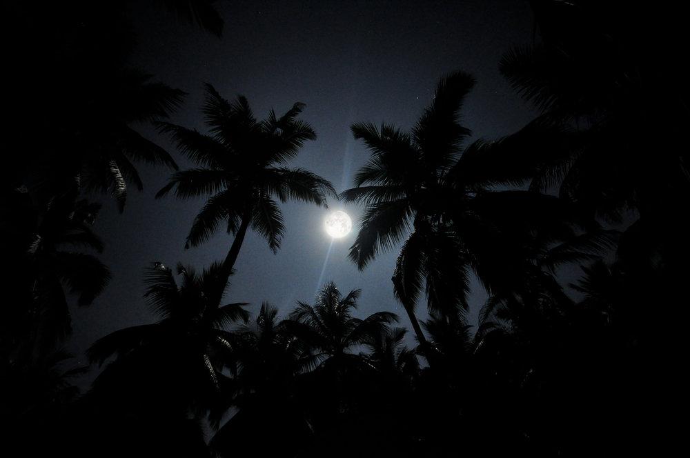 Koralia Moon 014.jpg