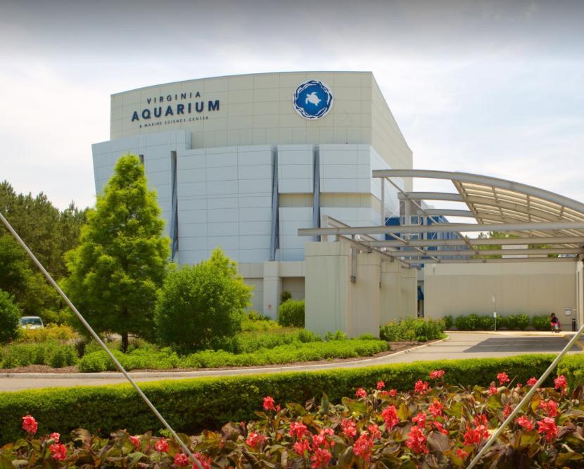 VA Beach Aquarium -