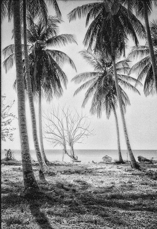 beach1a.jpg