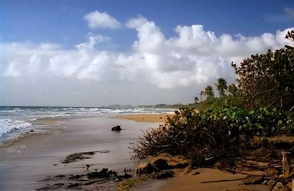may-beach2.jpg