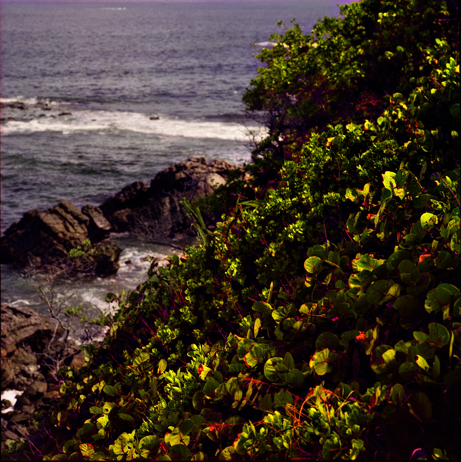 Toco, Trinidad. Hasselblad, Kodak Ektar film.