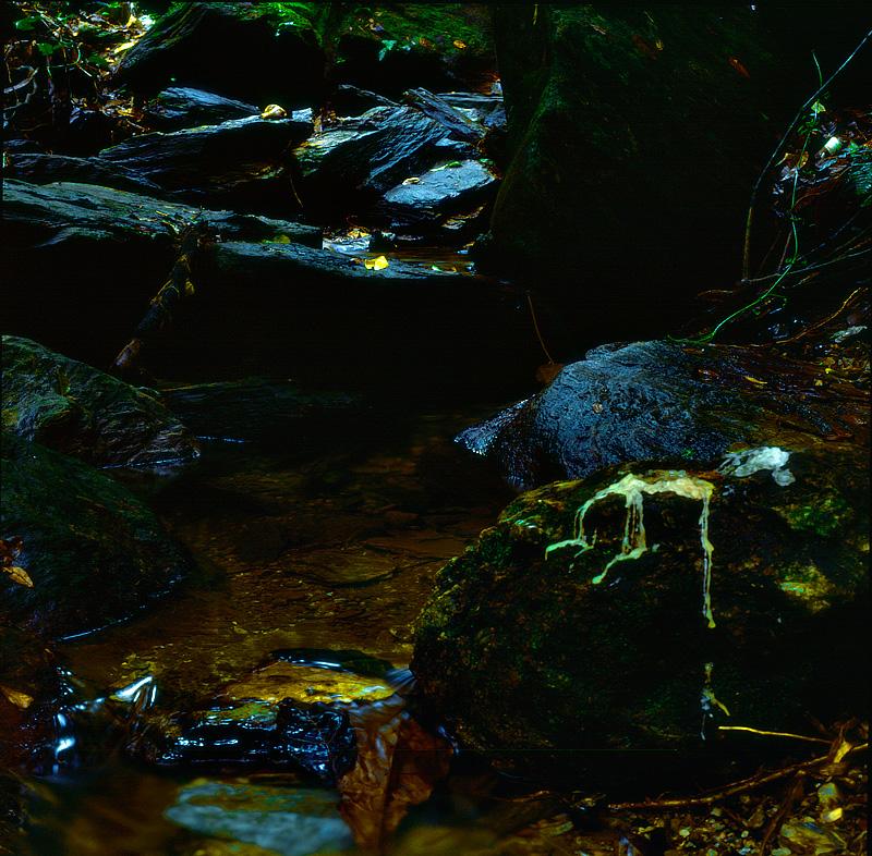Blue Basin waterfall tributary, Trinidad. Fuji Velvia film.