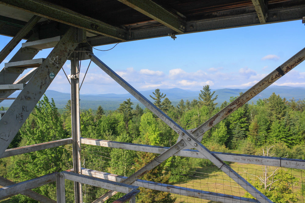Fire Tower View Mount Success.jpg
