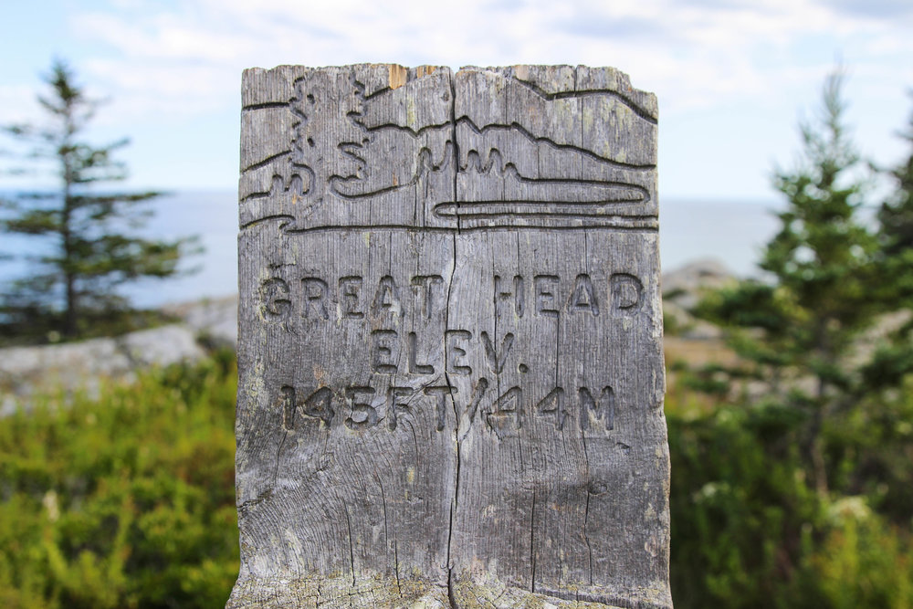 Acadia Great Head Trail.jpg