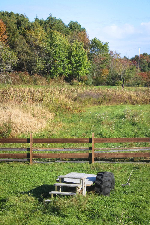 Emery Farm NH-3.jpg