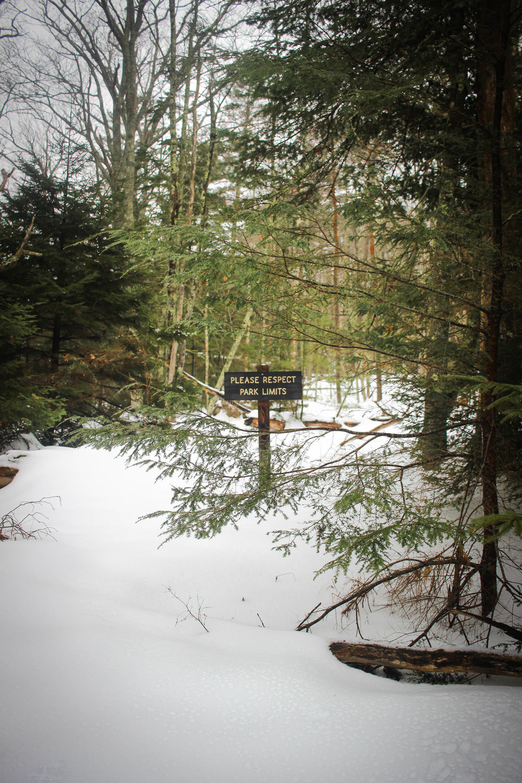Maine Getaway 2018_-94.jpg