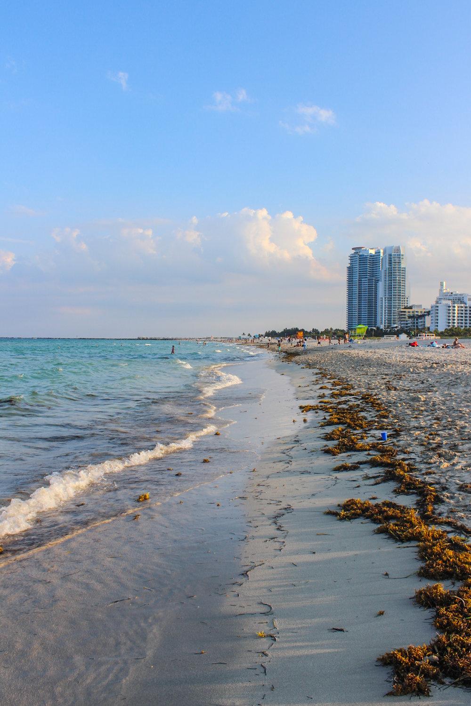 Miami_-5.jpg