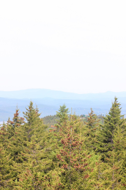 Belknap Mountain Hike_-42.jpg