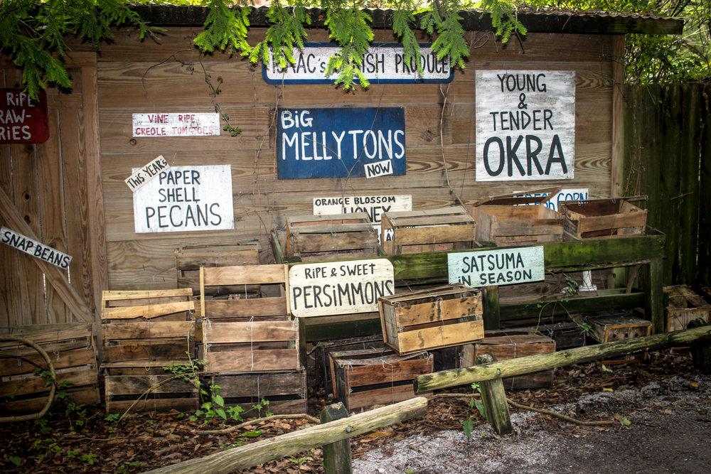New Orleans Blog_-11.jpg