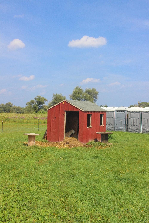Colby Farm TWG_-46.jpg