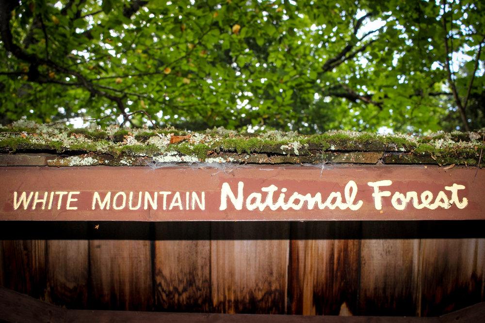 Mount Washington TWG_-8.jpg