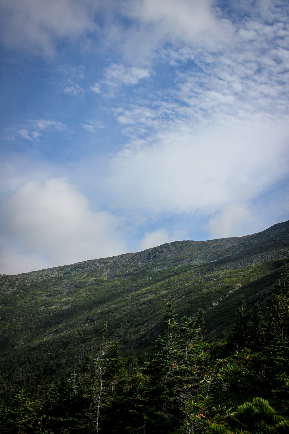 Mount Washington TWG_-60.jpg
