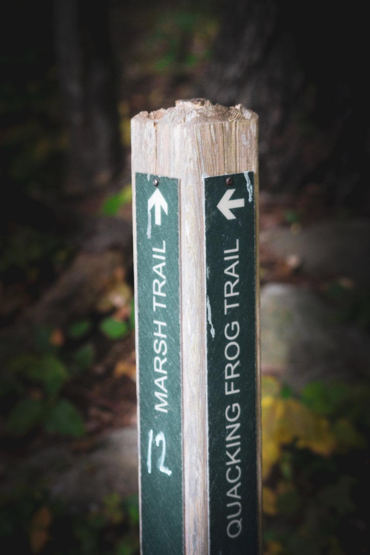 Broadmoor Wildlife Sanctuary TWG-30.jpg